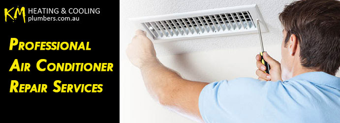 Professional Air Conditioner Repair Services