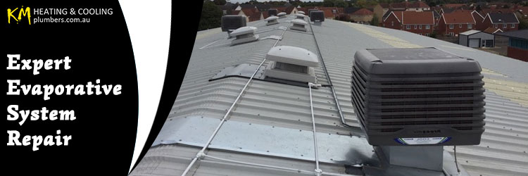 Evaporative System Repair Williamstown